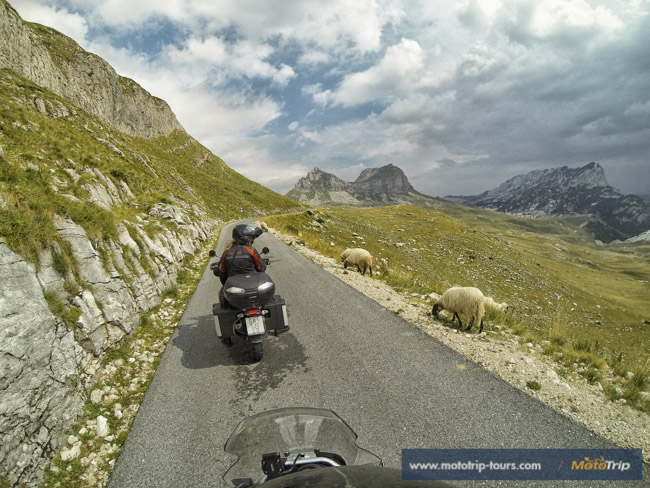 Best European Motorcycle Tours