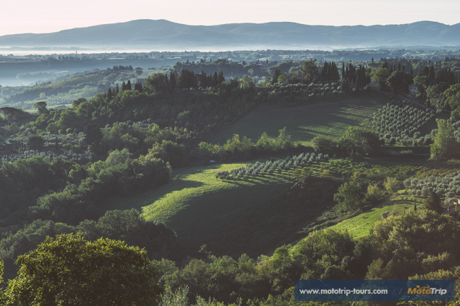 Green meadows in Tuscany