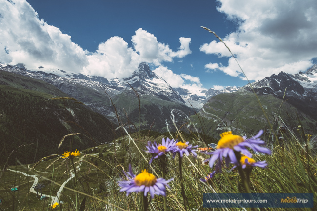 Amazing view of Matterhorn